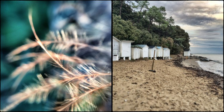 assemblage-maisons-sur-la-plage
